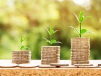 Weiberwirtschaft – wirtschaften von und mit Frauen